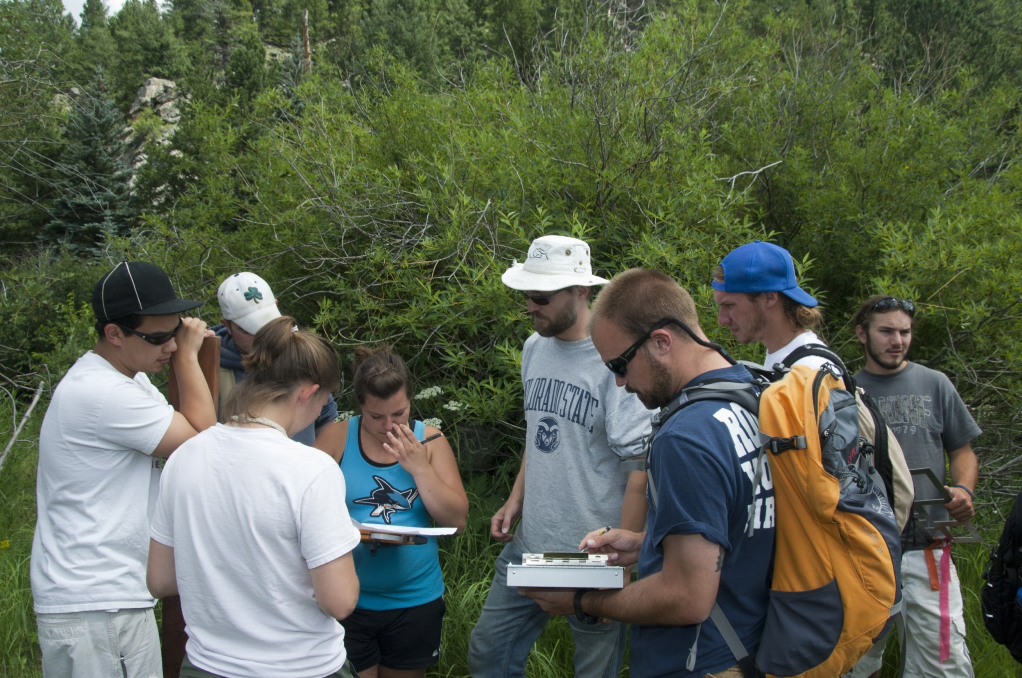 Students collaborating while outside learning at the CSU Mountain Campus