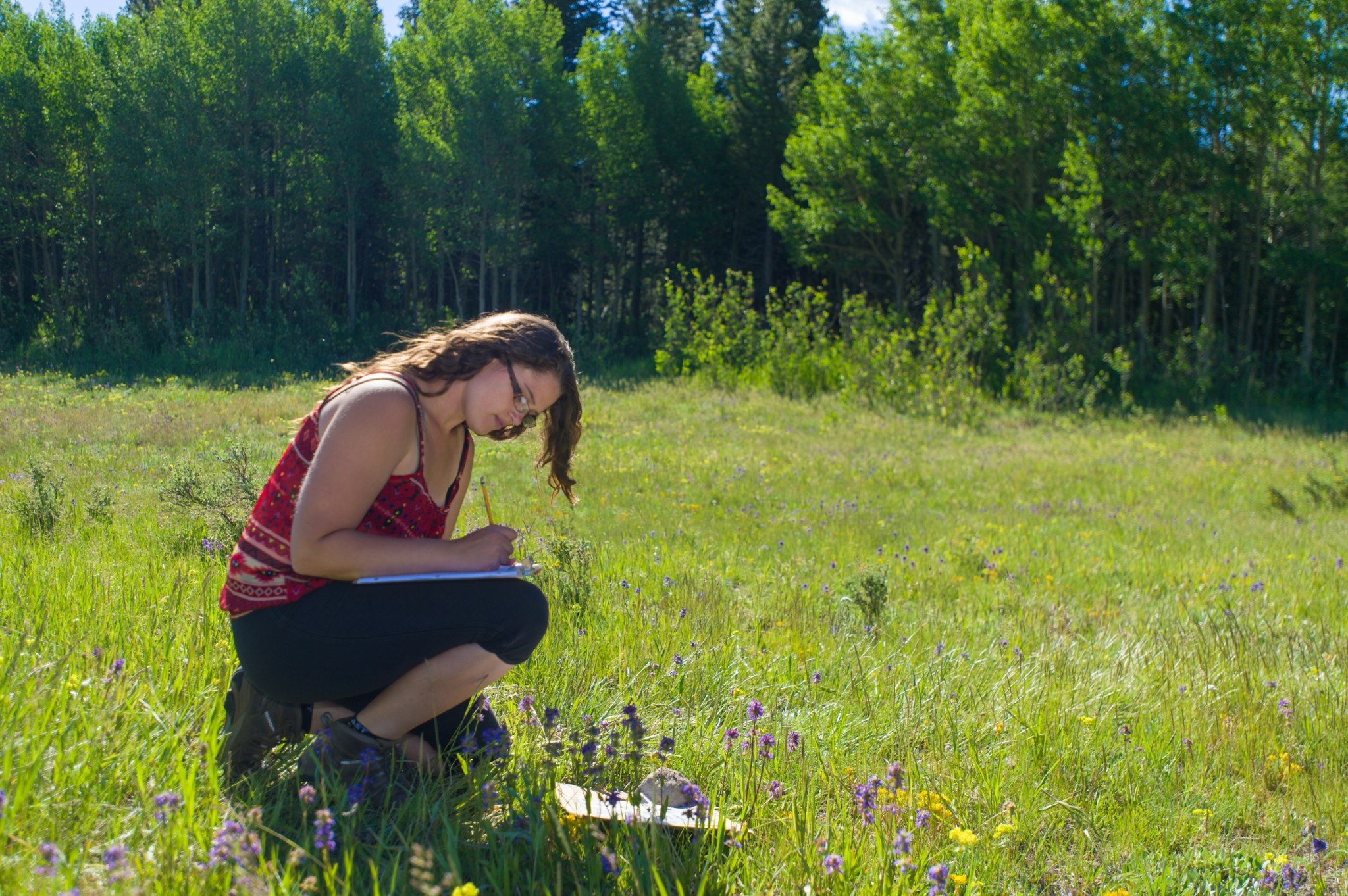 Photo of a student studying in a field at the CSU Mountain Campus