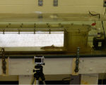 Fisheries lab equipment