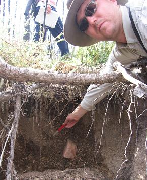 man near soil and tree roots