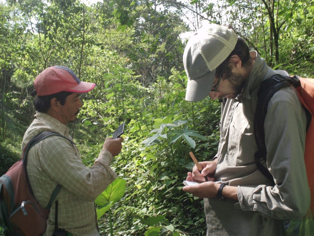 two people taking notes in a tropical forest