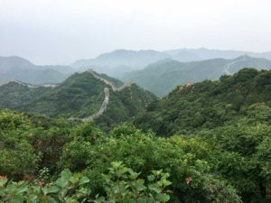 forest and Great Wall of China