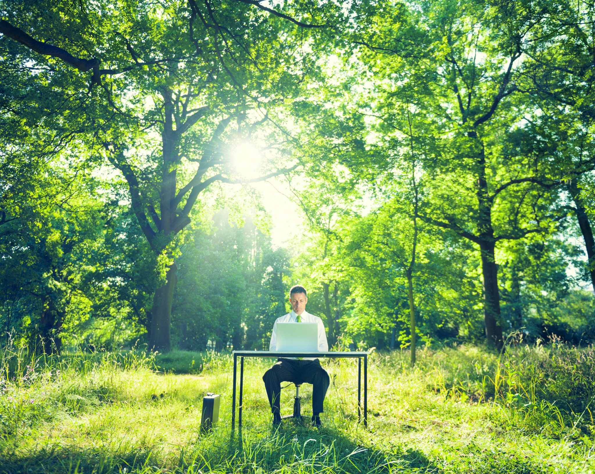man at desk in forest