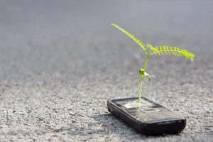 plant growing out of cell phone laying on pavement
