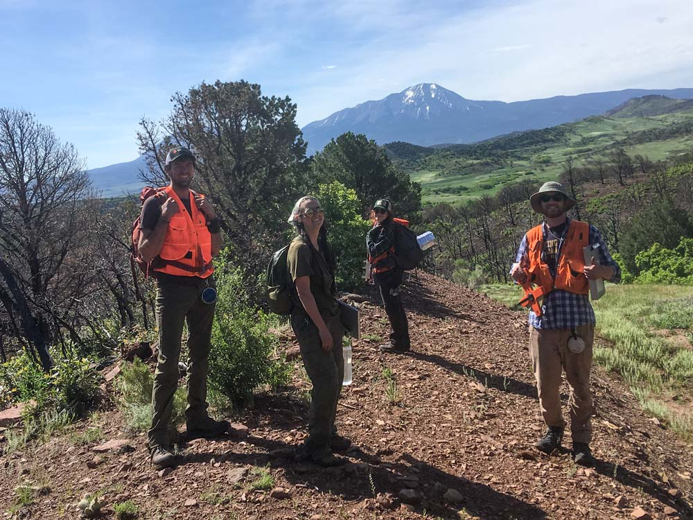 Group of forest technicians