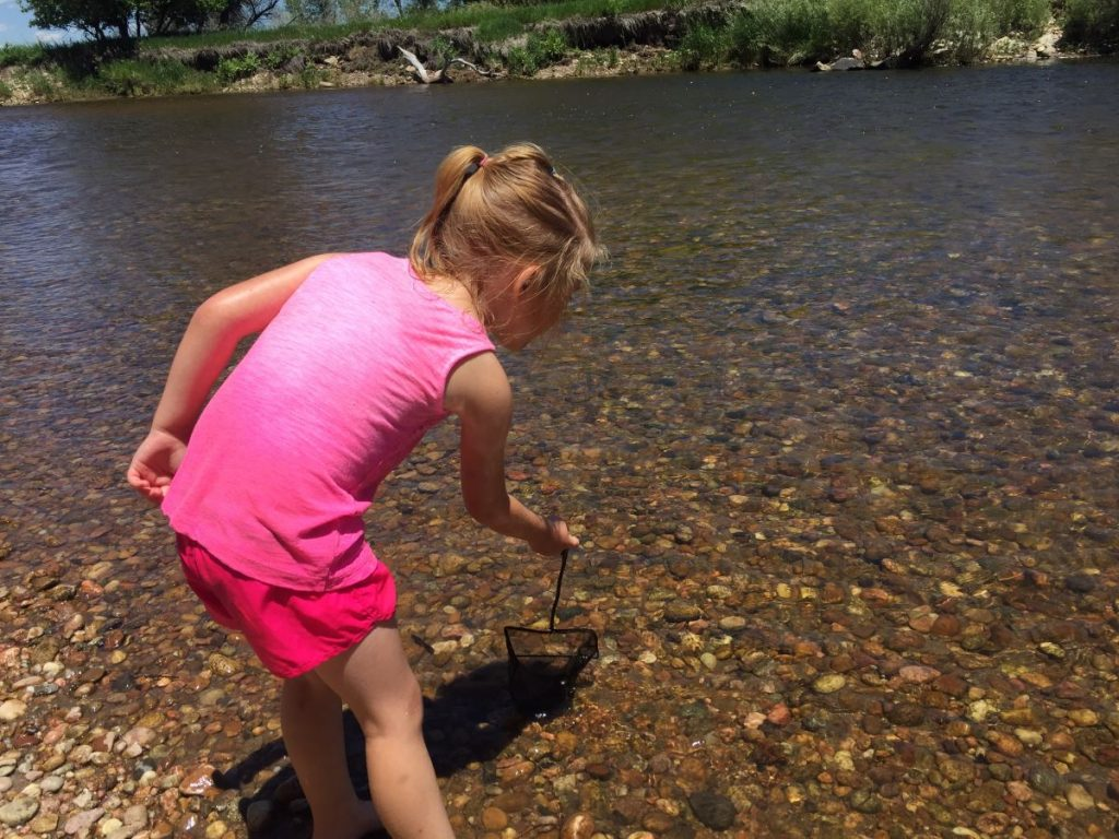 Child tries to catch insects in the river with a net