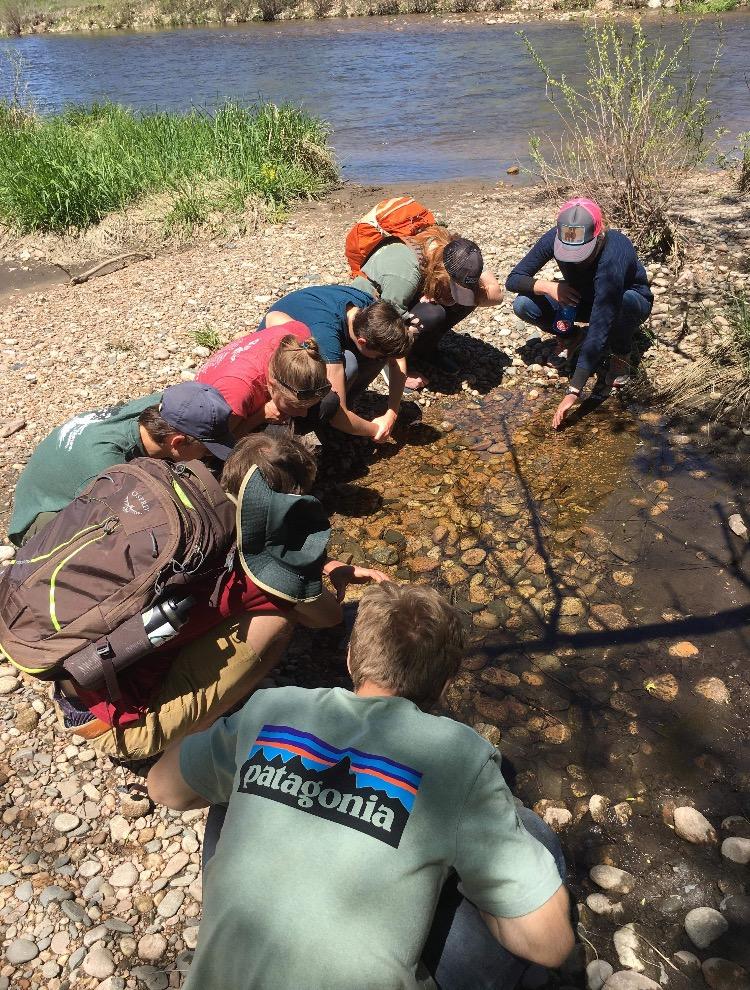 ELC staff explore a puddle