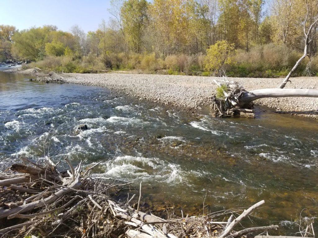 Cache la Poudre River; Photo courtesy of Alberto Vargas