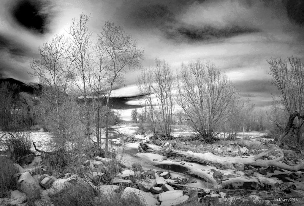 Near the river; Photo courtesy of Paul Avery