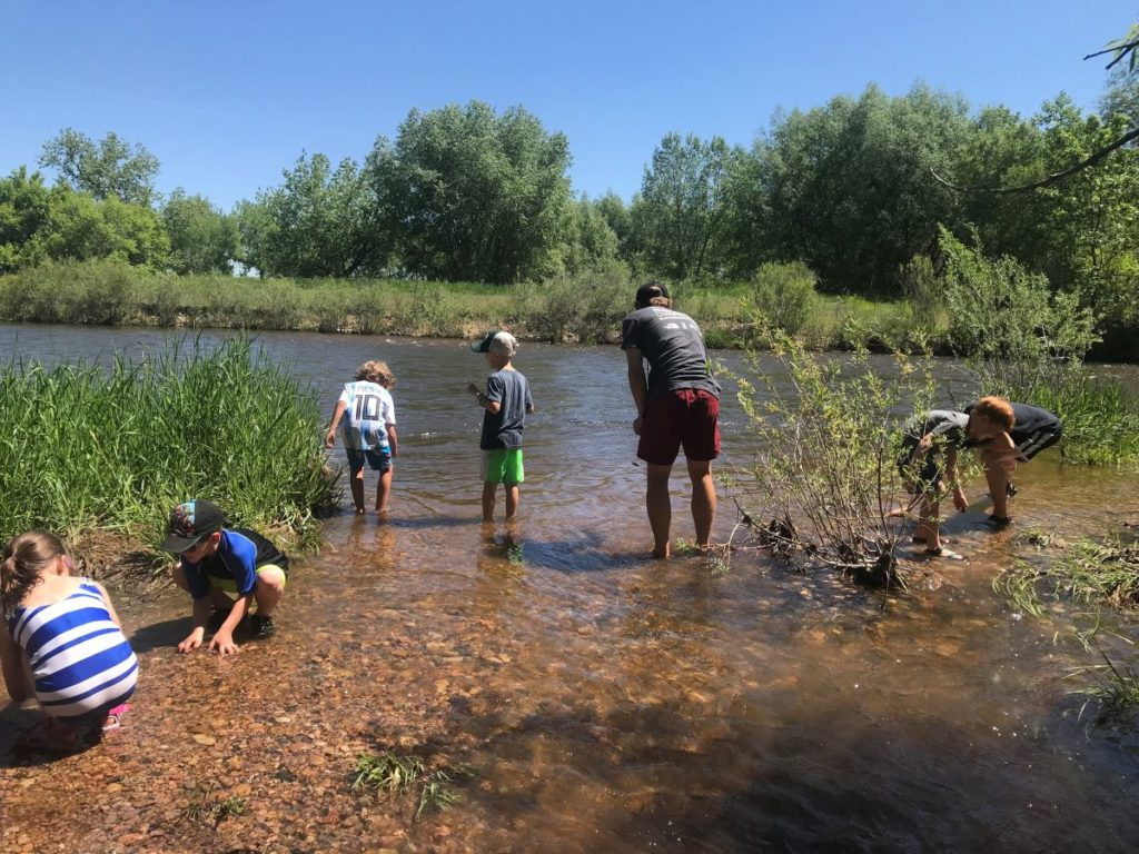 Children search for critters in the river