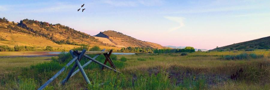 Pineridge Natural Area near Fort Collins, Colorado