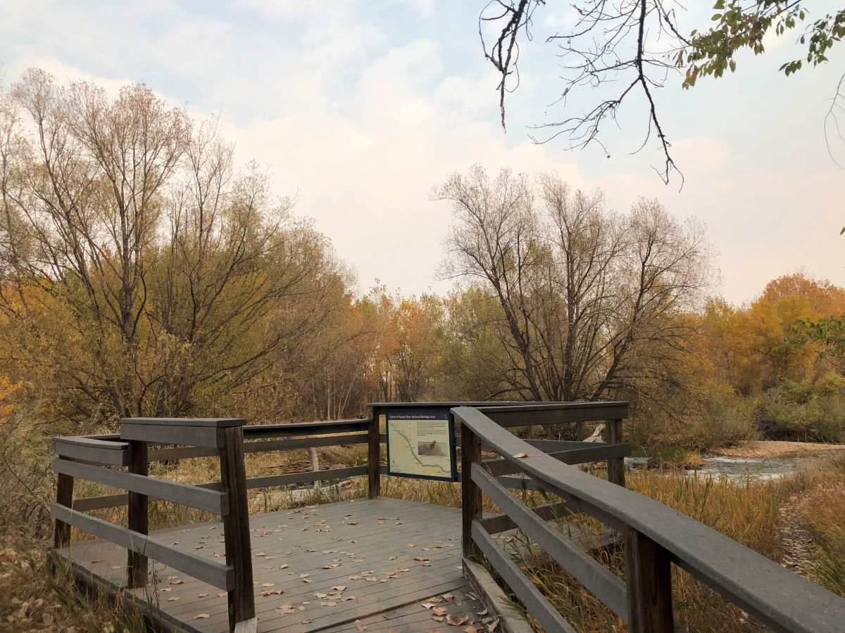 In the foreground is a wooden platform overlooking the Cache la Poudre River